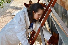 Mujer con autismo acariciando a una gallina
