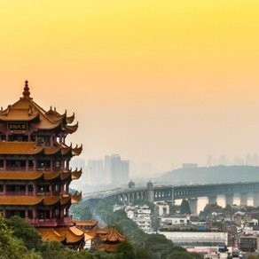 Wuhan, I'll See You Again in the Spring