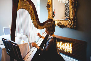 Nottinghamshire harpist reviews