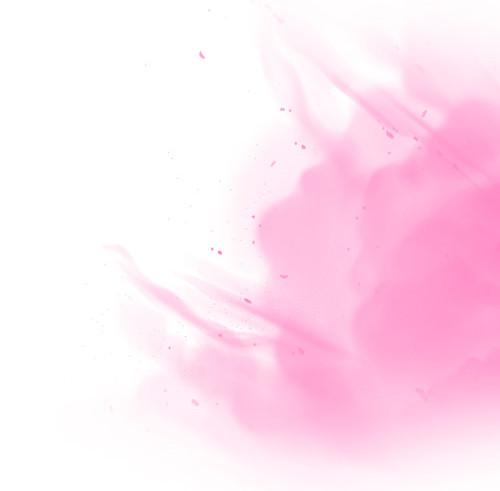 fundo_rosa2.jpg