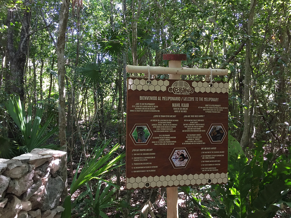 Ecobahia Bahia Principe Riviera Maya Resort
