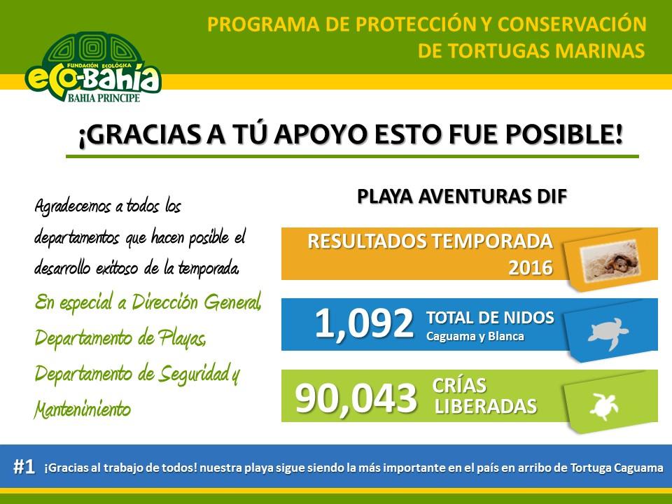 Programa de protección y conservación de tortugas marinas