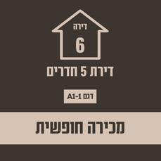 בניין 21 חופשי4.jpg