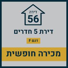 בניין 15 חופשי29.jpg