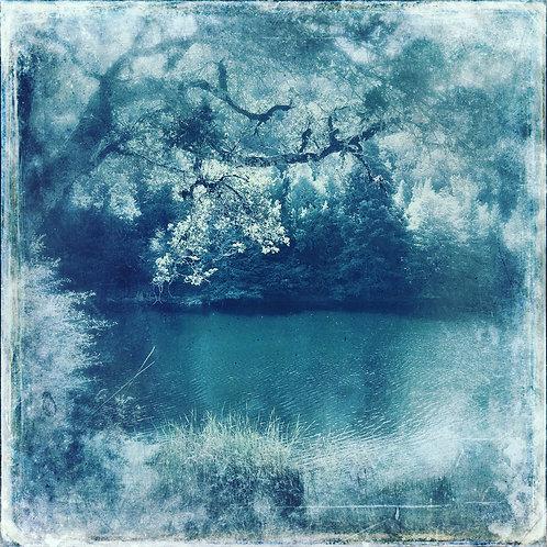 The Lake in Indigo