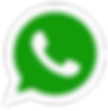 whatsapp-png-whatsapp-logo-png-1000-293x