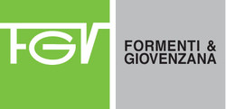 FGV-logo1