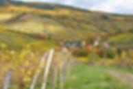 Schieferberg - EichelbergWeb.jpg
