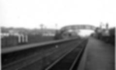Screen Shot 2019-11-03 at 15.02.53.png