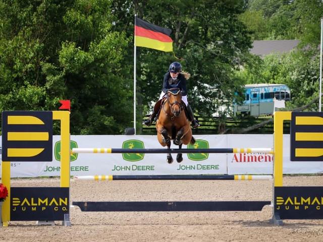 Dalman Show Jumping