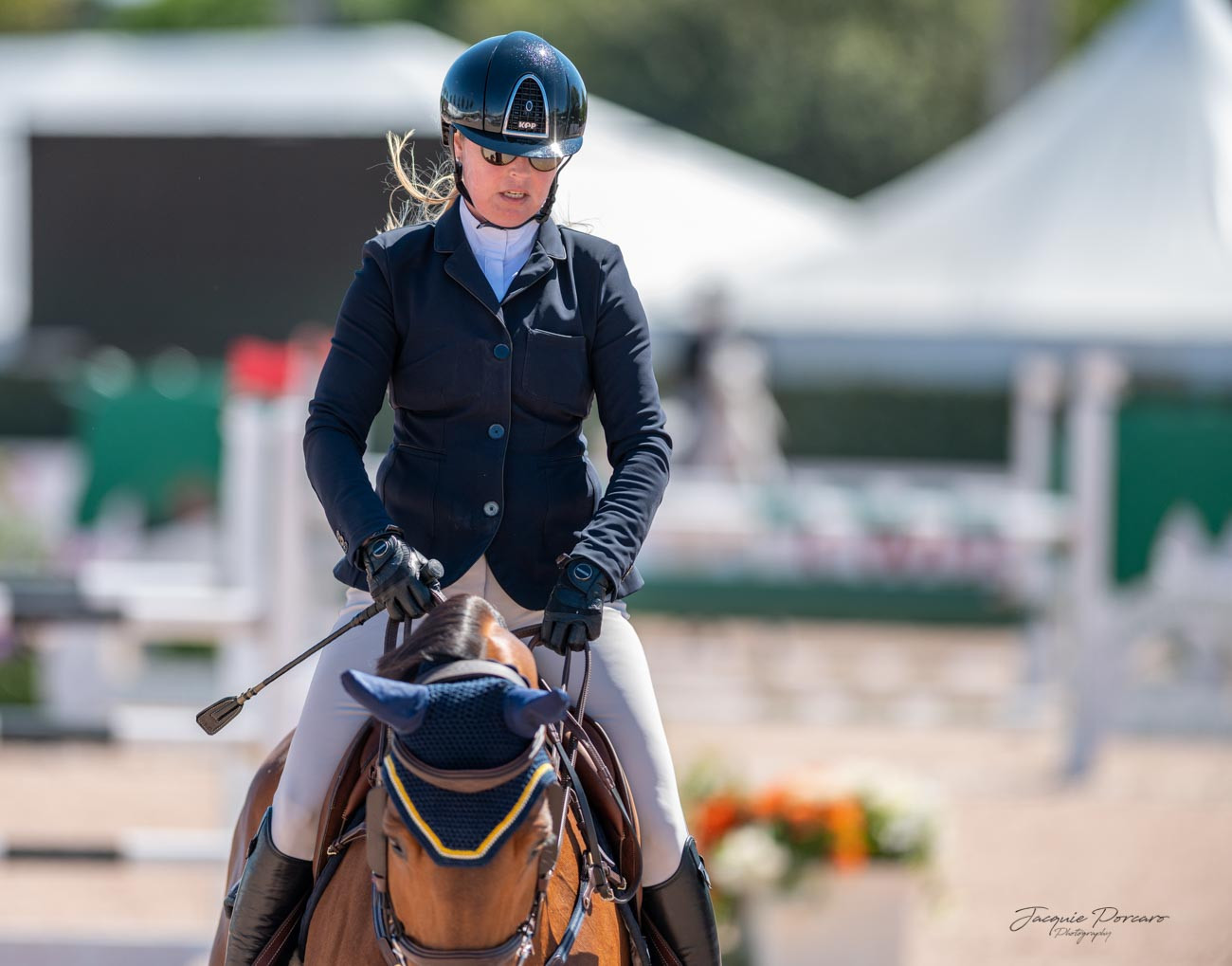 Dalman Show Jumping | Equine Development