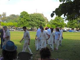 19 Aurhors cricket.jpg
