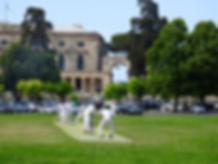 18 Authors cricket plateia.jpg