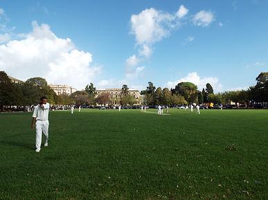 Plateia Cricket2.JPG