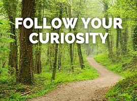 Follow Your Curiosity to Career Change