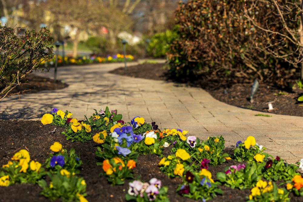 NJ shrub and lawn care - perennial bed