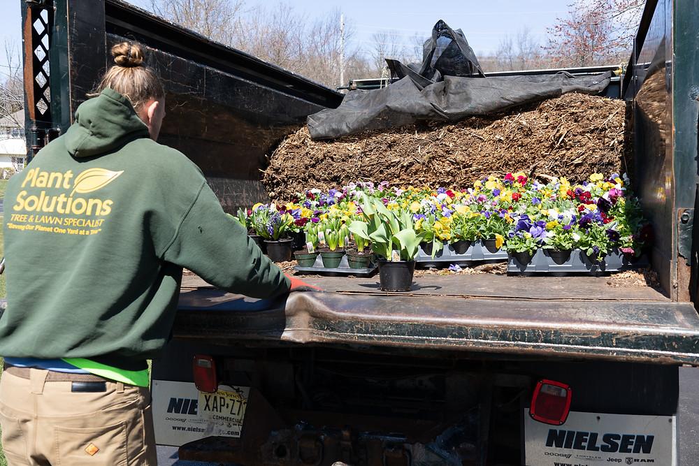 Landscaping service NJ