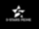 5_stars_peine1_941-WS.PNG