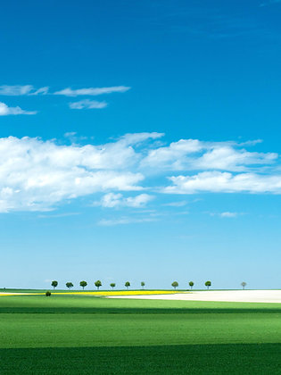 A field in France