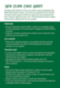 Luckys_New Clone Care Sheet_4x6_Page_2.j