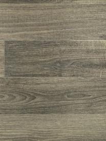 Discovery - Fossilised Oak