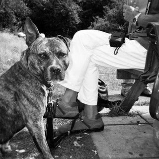 April in 2014 Cafe Art calendar. Robert Keen says that when he asked his friend sitting in an East London park if he could take a photo of his dog Paddy his friend said 'Crack on!'. Originally from Brixton, he says he was brought up 'in care' as his parents were alcoholics. Robert was street homeless for 20 years, but he has now been living in a bedsit in the Providence Row hostel in Whitchapel for three years. Before gaining housing he had been attacked while sleeping rough and ended up in a hospital for two weeks. 'I was woken up by getting a beating from three guys in suits. It was about 2 o'clock in the morning. They done me in and hurt me. Smashed my head open. Broke a couple of ribs. They went to town on me for no reason because they were drunk.' After the attack Robert went into rehab to get off the drugs and today he is clean. 'I feel better - I feel good, healthy.' Robert does a lot of art and has exhibited with Providence Row. 'I like art because I find it relaxing. It's a bit like therapy, isn't it?'
