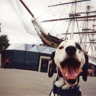 Photo by ROL. Cover of 2016 Cafe Art My London calendar. Second Place, Judge's Choice. Second Choice People's Choice. This Dalmatian, Mr Bond, is a friend of ROL and is pictured in front of the historic Cutty Sark in the Royal Borough of Greenwich. 'He likes to go around London checking out all the touristic places,' says ROL, who has had a photo in every My London calendar since the project began in 2013. The Cutty Sark's name comes from a Robert Burns poem Tam O'Shanter. The ship was built in 1869 and was one of the fastest clipper sailing ships to be built at the time. Formerly a chef, ROL has been sleeping rough for several years, mostly sofa surfing. He is an active volunteer with many charities, including Café Art, and several of his paintings are featured in cafes around London.