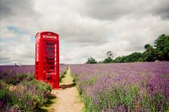 London Calling by Hugh Gary