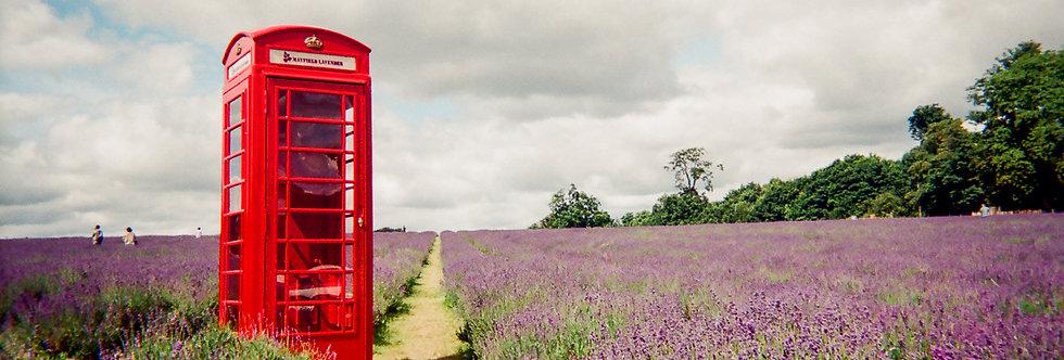 London Calling Greeting Card