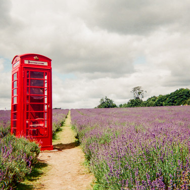 "London calling by Hugh Gary: May 2017 in MyLondon calendar and in 2016 exhibition. ""This is Mayfield Lavender. I was just out on a bike ride, and I thought 'that looks pretty good, especially the phone box in the middle of a field'. There is no phone in the box – it's just there to look pretty."" Hugh Gary is an ex-British Army serviceman and was helped into housing by the West London Mission's Big House, a homeless hostel for ex-servicemen. ""I went overseas to a few places: all over the Middle East, Australia, Canada."" In the army for 10 years, he left in 2013. ""A lot of the homeless people in London are ex-service."" Hugh lives in a self-contained flat after progressing on from the Big House hostel seven months ago. ""And then it's into the big world after that. The flat is only temporary – it's still part of the Big House. It's so residents can get used to paying bills."" Hugh hopes to be in his current flat until he finishes a photography course with West London University."