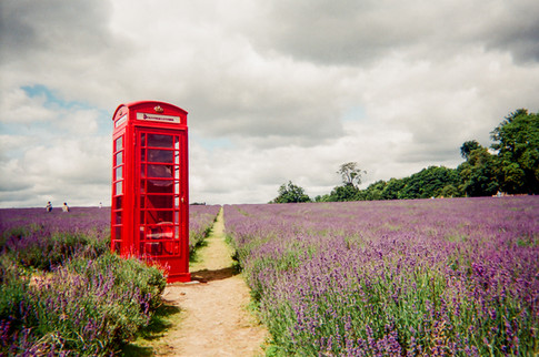 """London calling by Hugh Gary: May 2017 in MyLondon calendar and in 2016 exhibition. """"This is Mayfield Lavender. I was just out on a bike ride, and I thought 'that looks pretty good, especially the phone box in the middle of a field'. There is no phone in the box – it's just there to look pretty."""" Hugh Gary is an ex-British Army serviceman and was helped into housing by the West London Mission's Big House, a homeless hostel for ex-servicemen. """"I went overseas to a few places: all over the Middle East, Australia, Canada."""" In the army for 10 years, he left in 2013. """"A lot of the homeless people in London are ex-service."""" Hugh lives in a self-contained flat after progressing on from the Big House hostel seven months ago. """"And then it's into the big world after that. The flat is only temporary – it's still part of the Big House. It's so residents can get used to paying bills."""" Hugh hopes to be in his current flat until he finishes a photography course with West London University."""