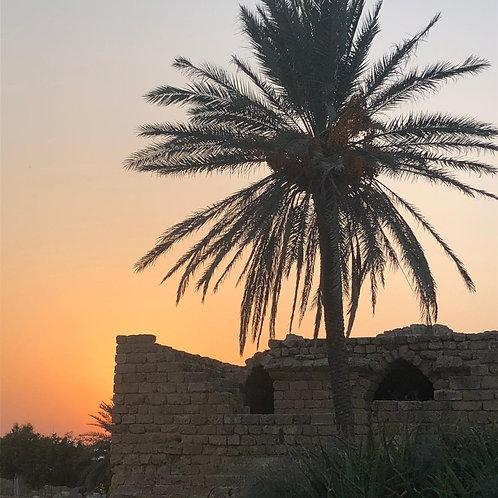 Caesarea - Live On Location