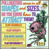 Pollinator Infographic