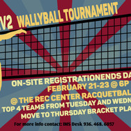 Campus Rec Wallyball Poster