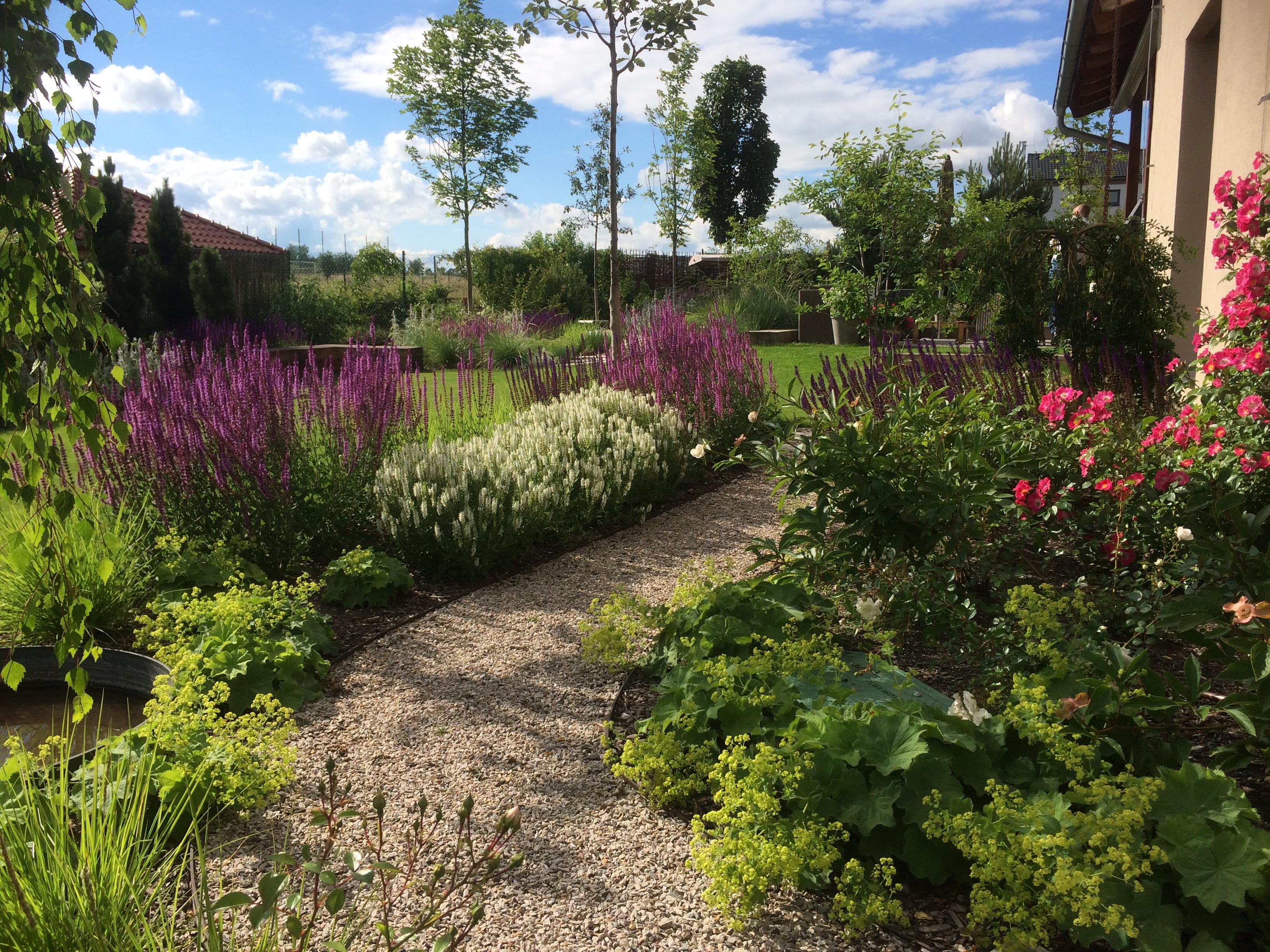 zahrada klínec