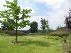 zahrada popice