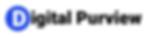 Digital Purview logo 400 100.png