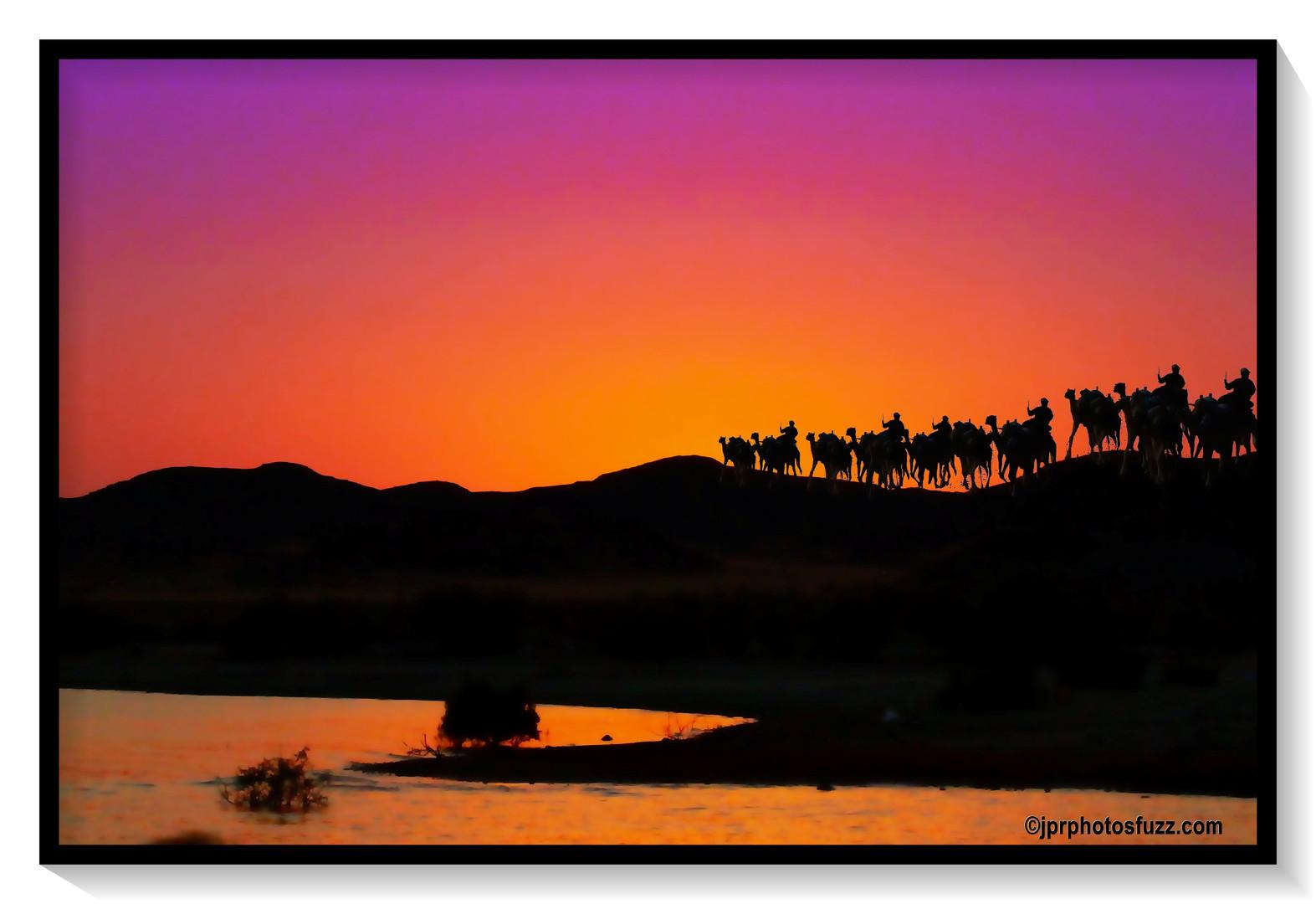 ABOU SINBEL Camel 4 - Egypte