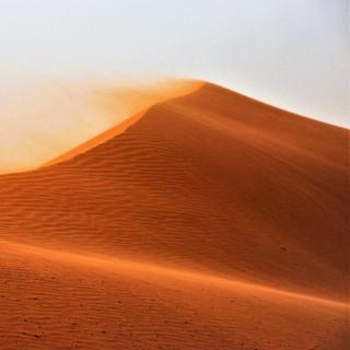 Wahiba desert long.jpg