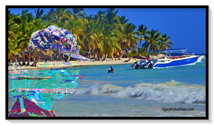 SAONA ISLAND - Caraibes