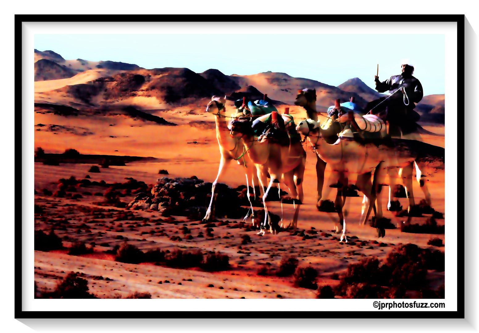 CARAVAN - Egypte
