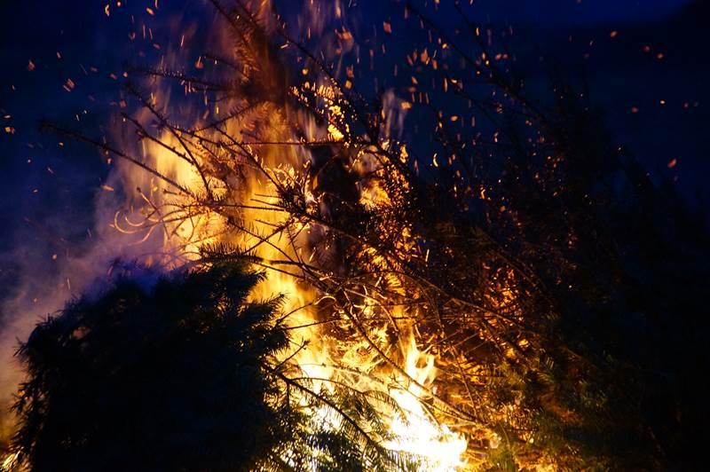 Tannenbaumverbrennen18