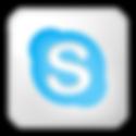social-skype-box-white-icon.png