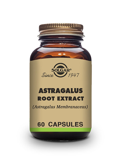 Astragalus Root Extract 60 Vegicaps