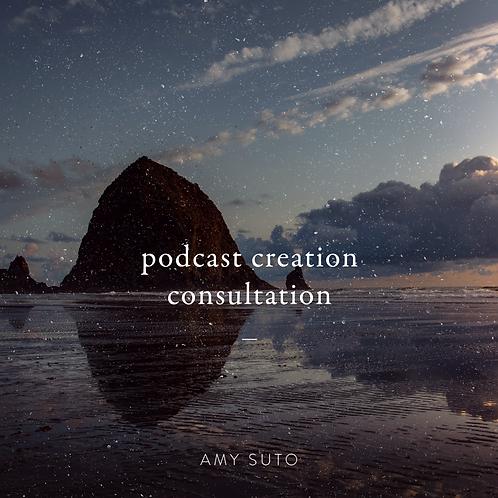 Podcast Creation Consultation