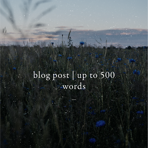 Blog Post | Up to 500 Words with SEO