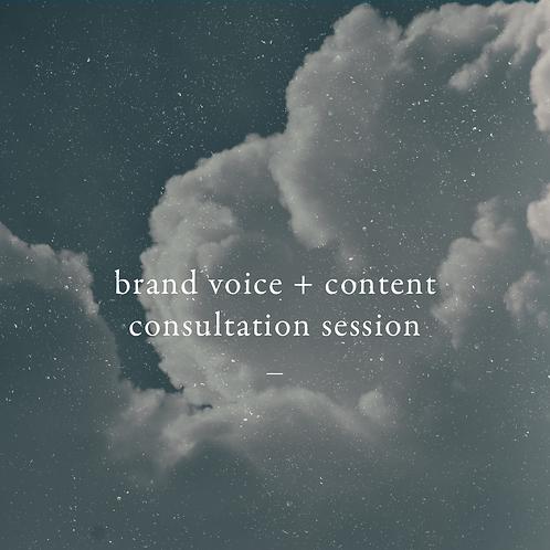 Brand Voice + Content Consultation Session