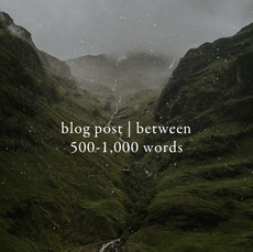 Blog Post | Between 500-1,000 Words with SEO