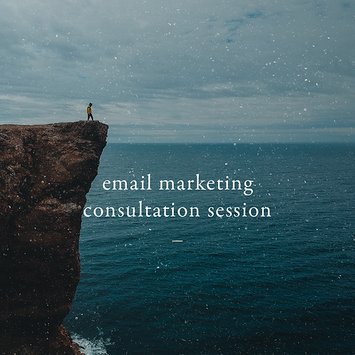 Email Marketing Consultation Session
