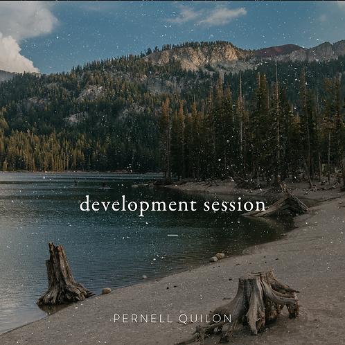 Development Session (1 hour)